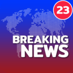 News Home – Full Screen News Widget and Launcher 2.6.39 PremiumMOD Cracked